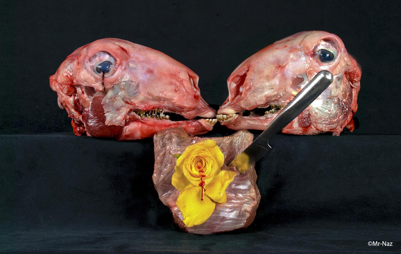 Tears Of Mistrust: Knife Of Jealousy: Begins The Wilting Of Venus's Flower: Slowly Weeps Its Tears